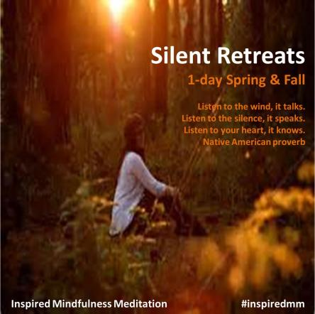 Mindfulness Meditation - Silent Retreats